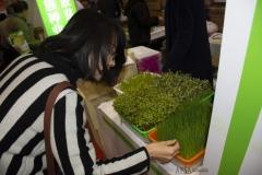 2018 Oct 18 - Beijing Seed Congress by SWL (17)