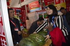 2018 Oct 18 - Beijing Seed Congress by SWL (29)
