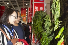 2018 Oct 18 - Beijing Seed Congress by SWL (31)