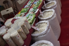 2018 Oct 18 - Beijing Seed Congress by SWL (45)