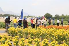 2019 Jan - Chiatai Field Day (13)