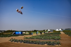 2018 Oct 23 - Korea Seed Expo by SWL (124)