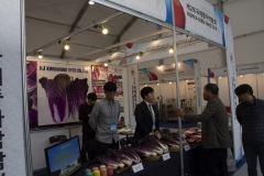 2018 Oct 23 - Korea Seed Expo by SWL (150)