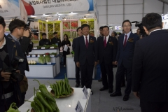 2018 Oct 23 - Korea Seed Expo by SWL (35)