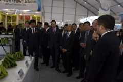 2018 Oct 23 - Korea Seed Expo by SWL (37)