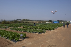2018 Oct 23 - Korea Seed Expo by SWL (72)