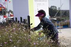 2018 Oct 24 - Korea Seed Expo Day 2 by SWL (15)