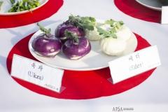 2018 Oct 25 - APSA at Korea Seed Expo (24)
