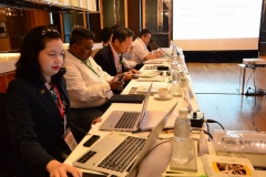APSA_Midterm_Meeting_2019_by_Oil (10)