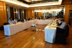 APSA_Midterm_Meeting_2019_by_Oil (12)