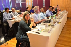 APSA_Midterm_Meeting_2019_by_Oil (17)