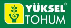 Bronze Yuksel Tohum