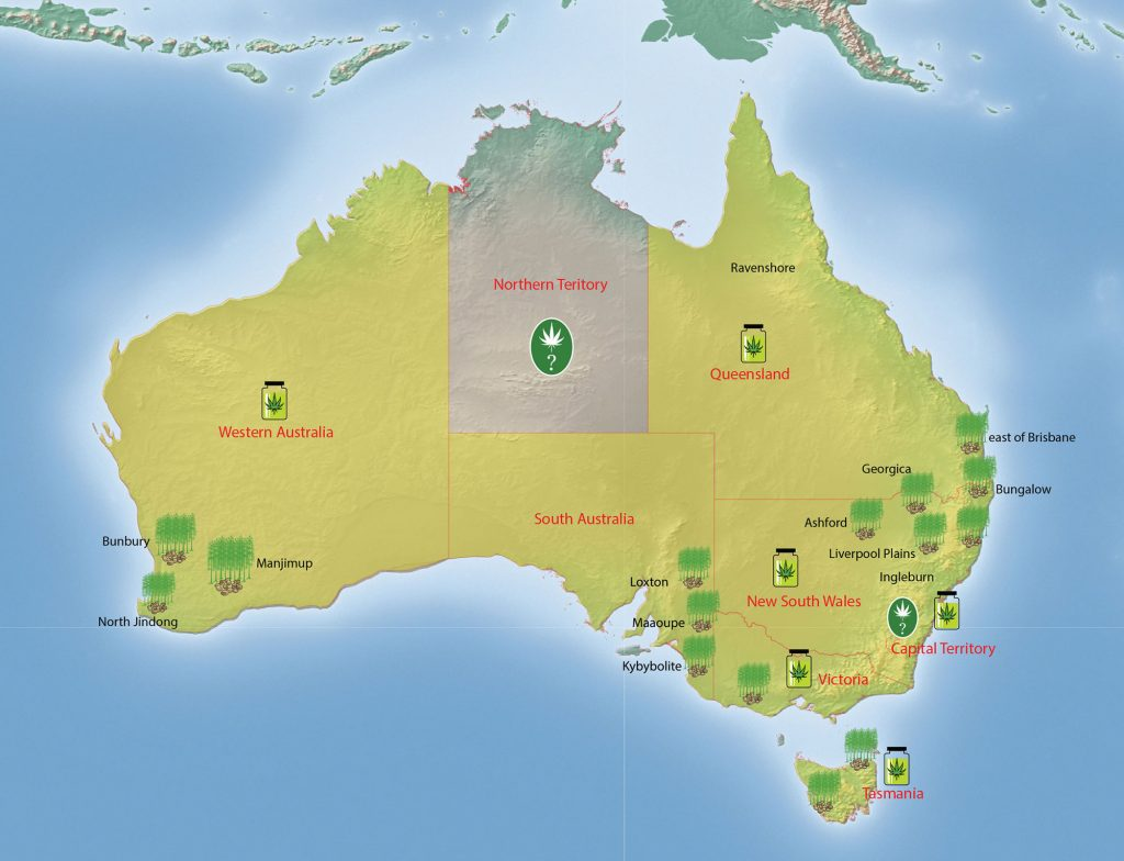 Australia's Cannabis Industry