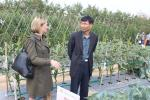 2017 Guangdong Seed Expo Field Exhibition (12)